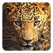 Wild animals Live Wallpaper For PC (Windows & MAC)