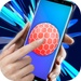 Ball toy For PC (Windows & MAC)