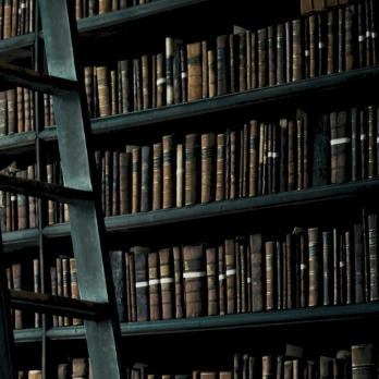 Book Shelf by u/fistwielder