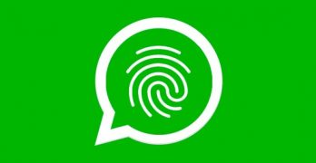 WhatsApp officially receives fingerprint lock; see how to activate