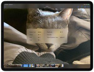 Keyboard shortcuts for fullscreen view